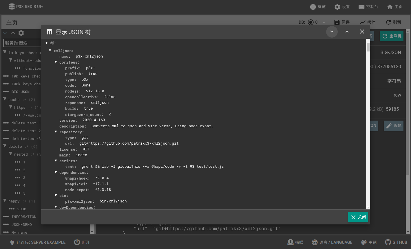 Dark themed - JSON preview